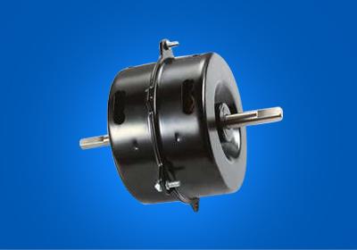 Purifier motor